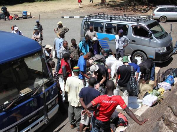 Африка, это когда парочка черных братьев занимаются делом, остальные не занимаются, но  смотрят, иногда шумно дают советы.
