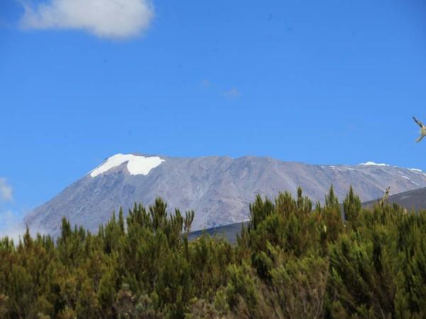 Следующее утро нас снова порадовало видами Килиманджарских снегов, до которых еще 4 дня пути. И сменой ландшафта – мы подобрались к вересковым пустошам.